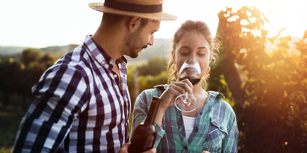 Atracciones del resort - Cata de vinos en los viñedos del valle de Capay en el resort de Brooks, California